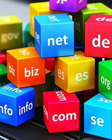 Domain Name Registrations